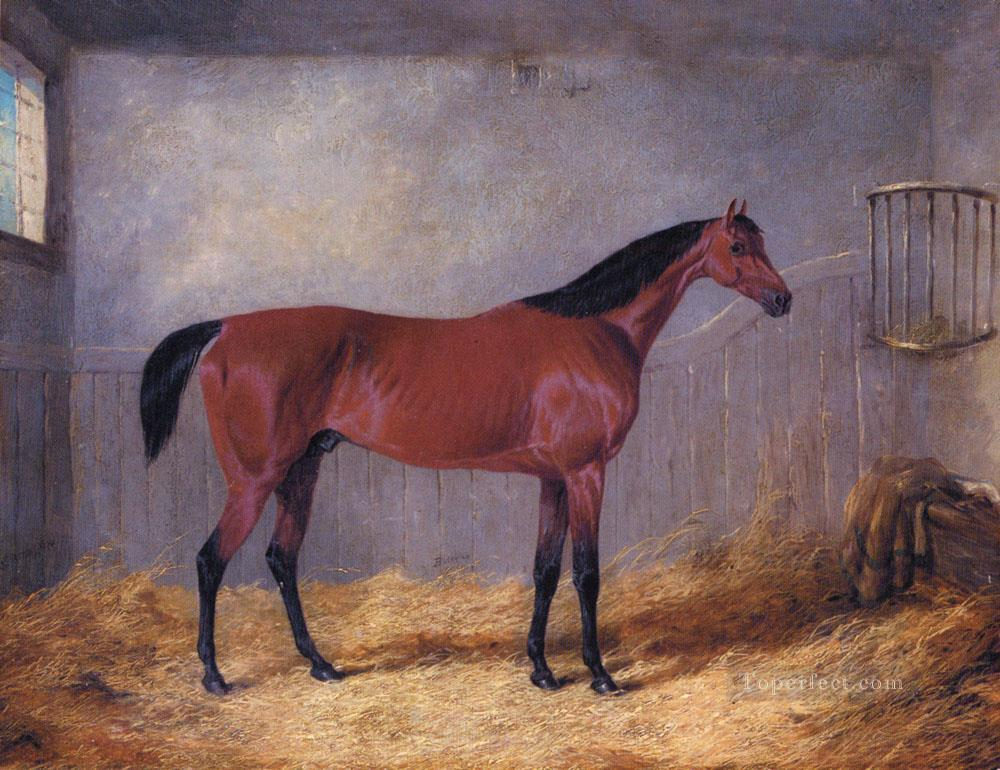 The Duke Of Graftons Bolivar In A Stable John Frederick Herring Jr horse Oil Paintings