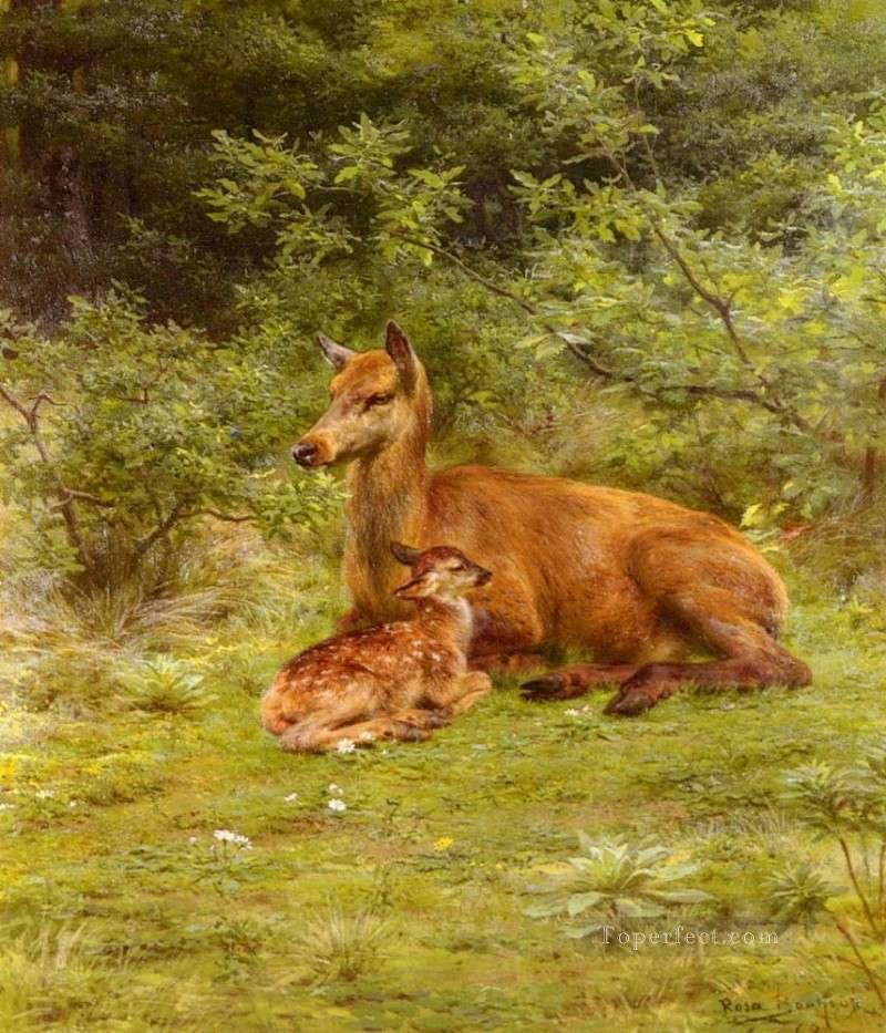 Cervus nippon mother and baby Oil Paintings