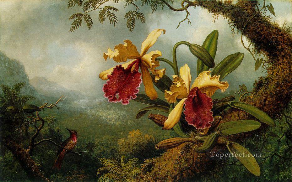 Orchids and Humming bird Martin Johnson Heade Oil Paintings