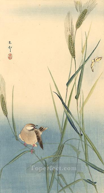 songbird on barley stalk Ohara Koson birds Oil Paintings