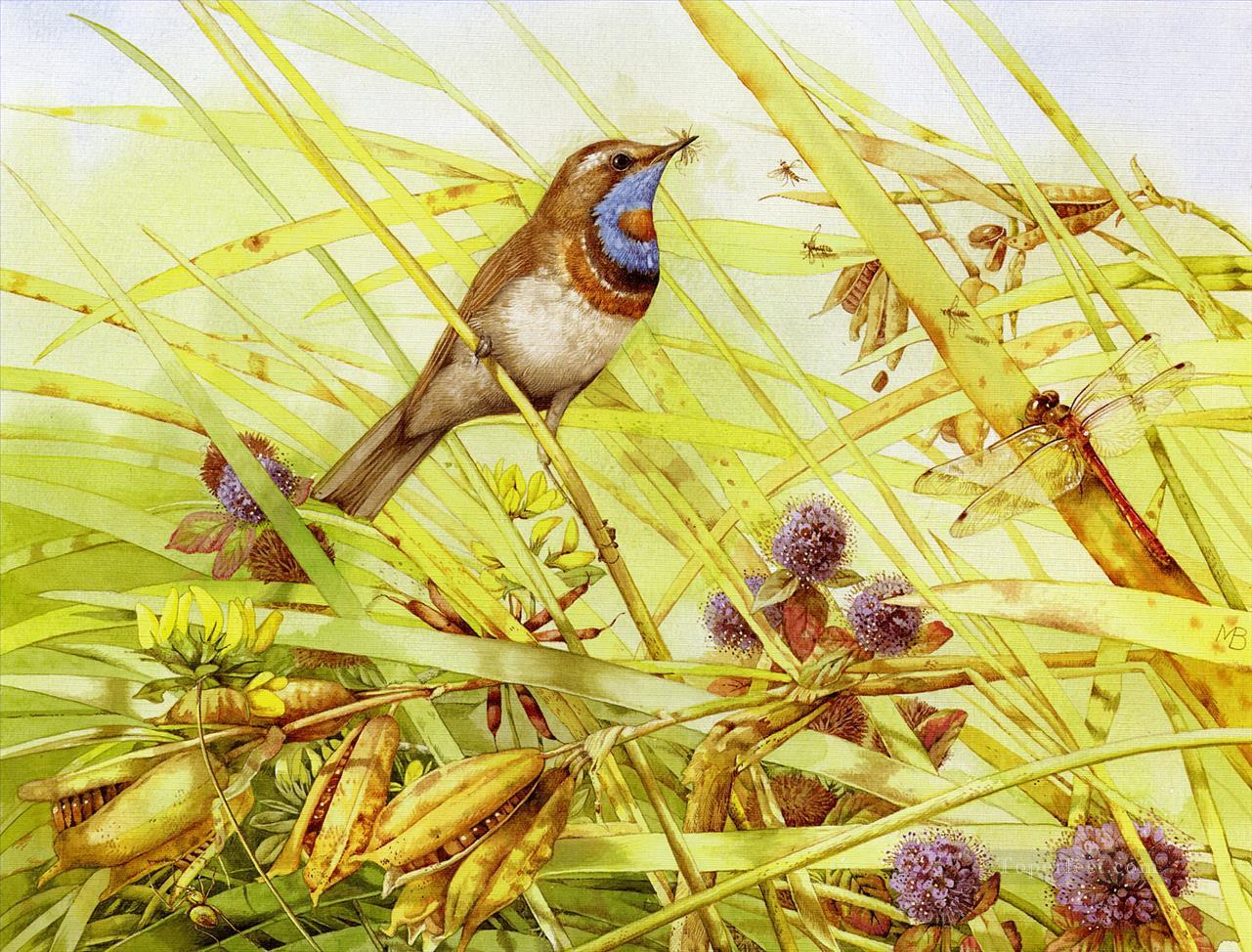 bird and darning needle Oil Paintings