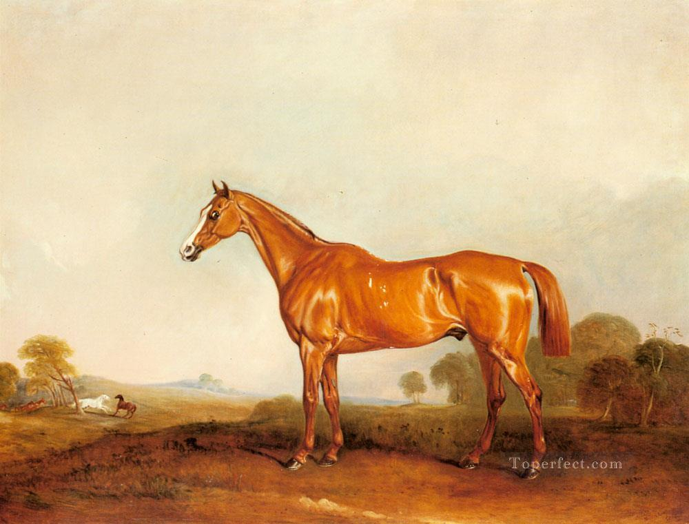 A Golden Chestnut Hunter In A Landscape horse John Ferneley Snr Oil Paintings