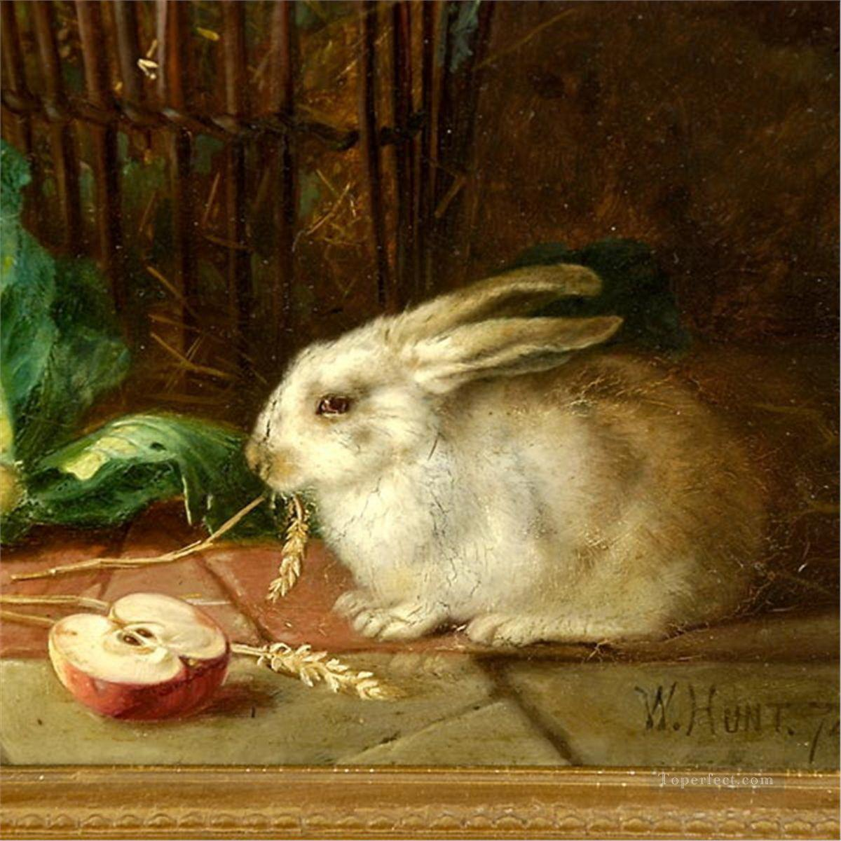 am192D animal rabbits Oil Paintings