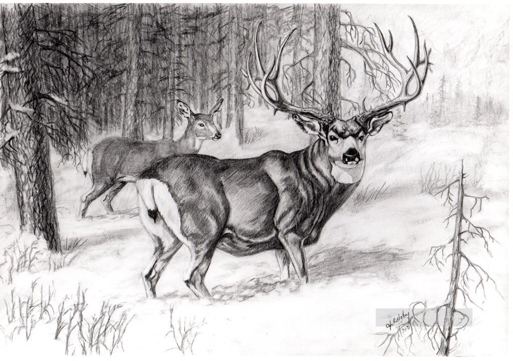 deer pencil drawing black and white Oil Paintings