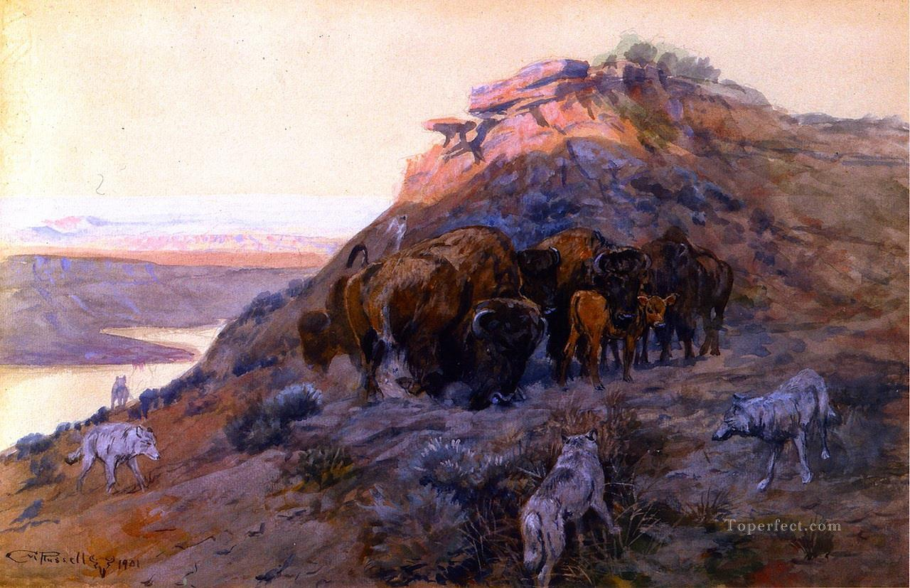 buffalo herd at bay 1901 Charles Marion Russell hunting Oil Paintings