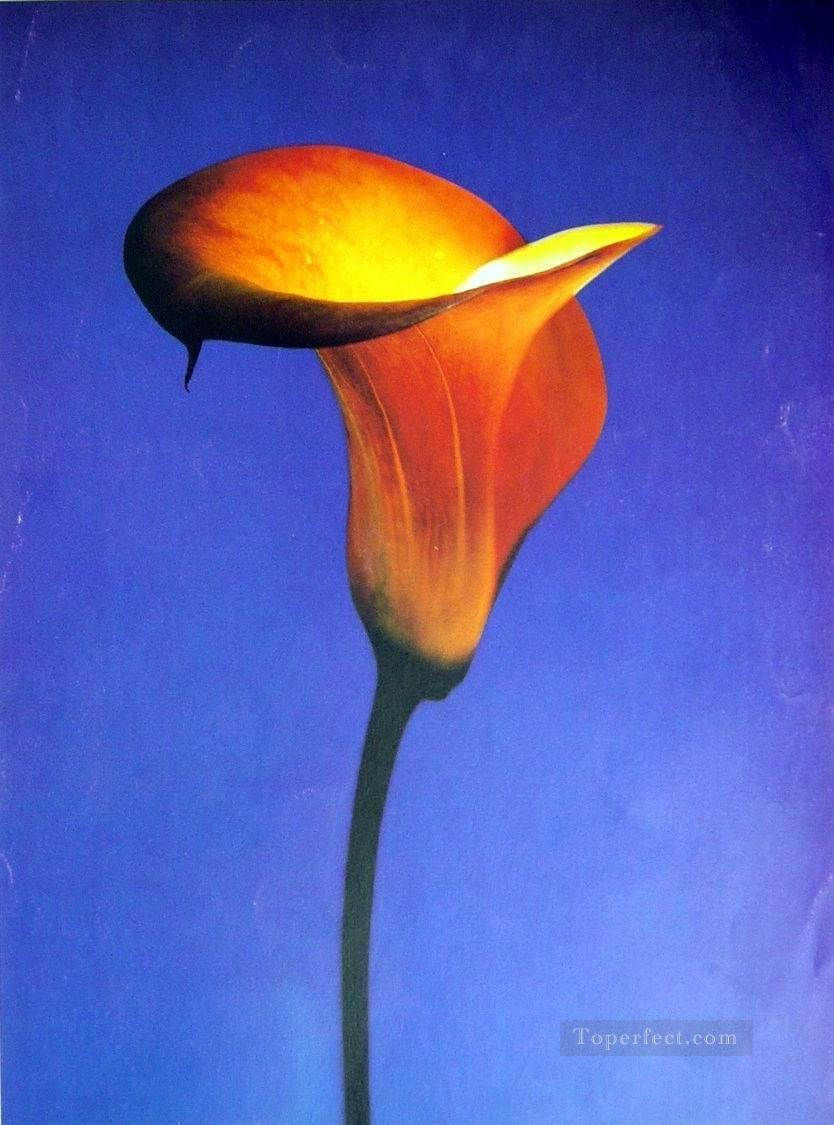 xsh0399b realistic from photos flowers Oil Paintings