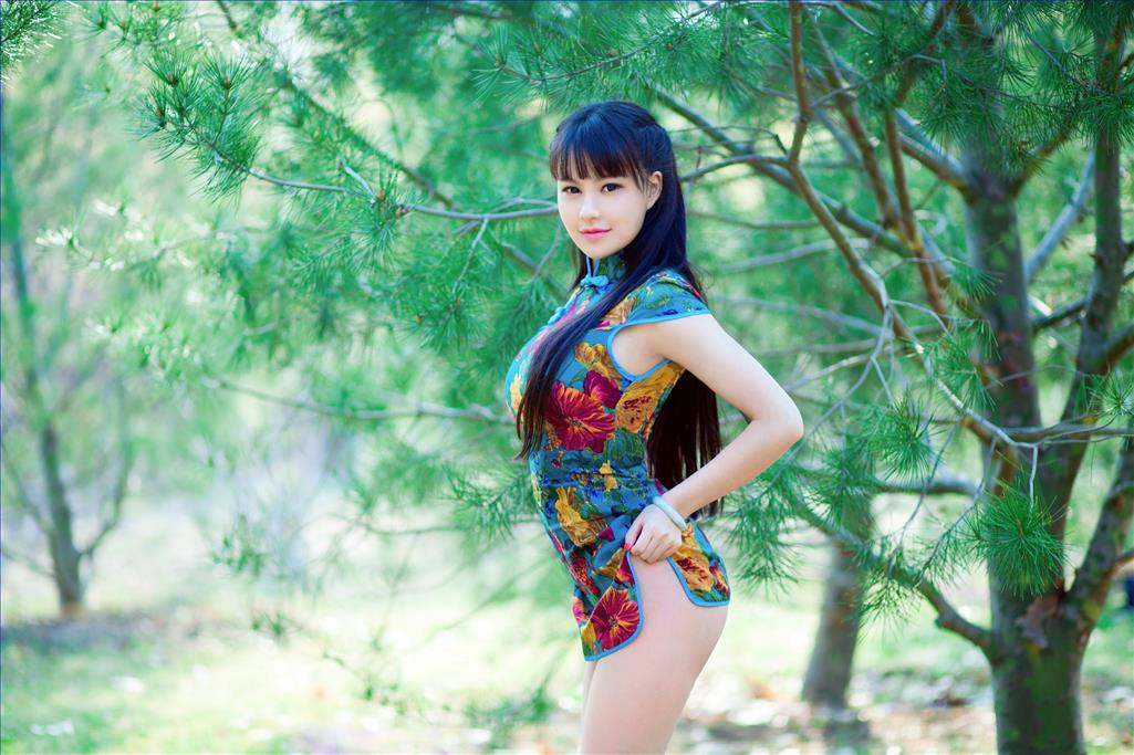 Chinese Girl Nude in Cheongsam Painting from Photos to Art Oil Paintings