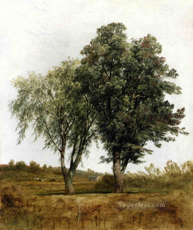 A Study of Trees scenery John Frederick Kensett Oil Paintings