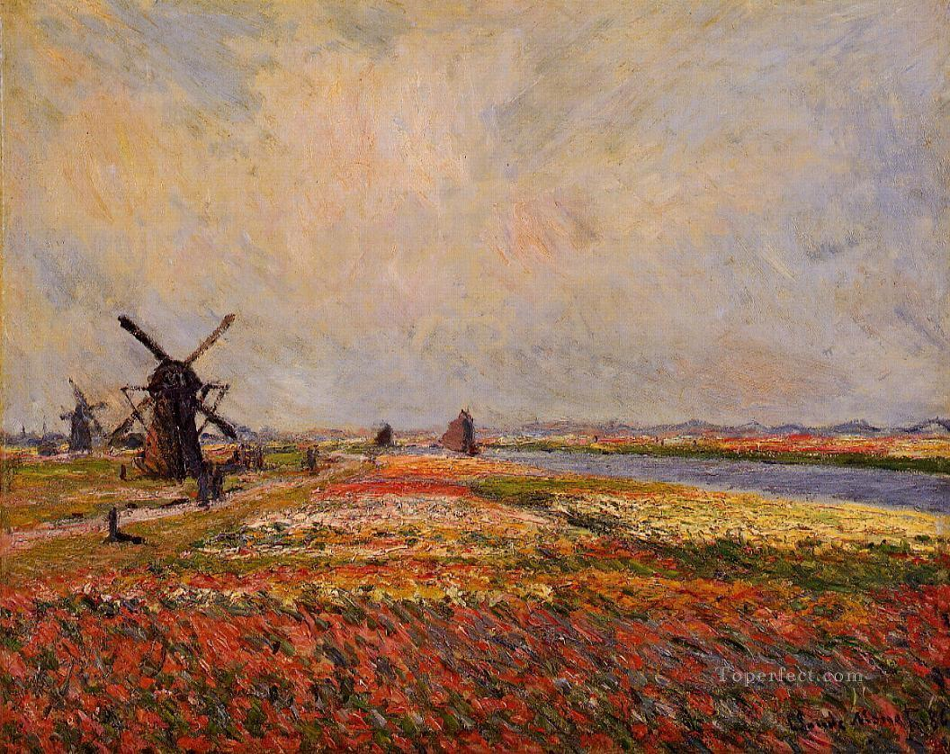 Fields of Flowers and Windmills near Leiden Claude Monet scenery Oil Paintings