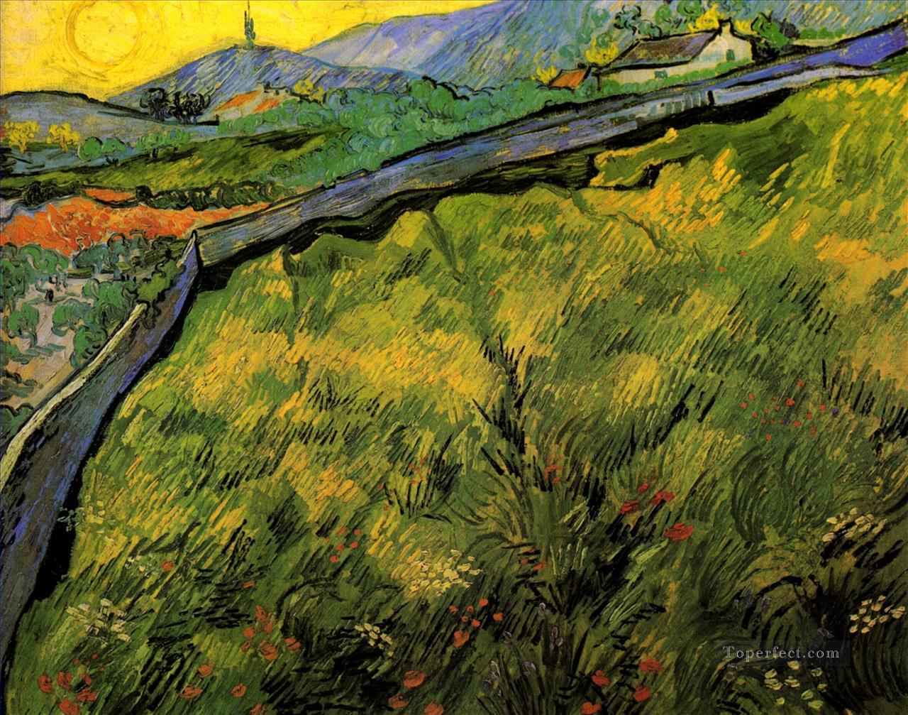 Field of Spring Wheat at Sunrise Vincent van Gogh scenery Oil Paintings