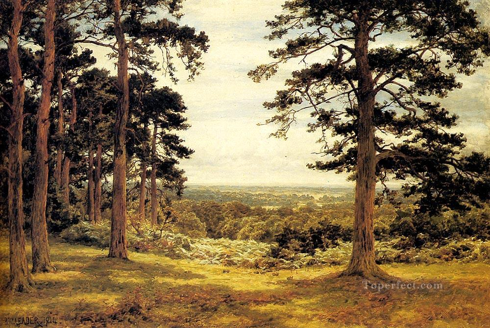 A Peep Through The Pines landscape Benjamin Williams Leader woods forest Oil Paintings